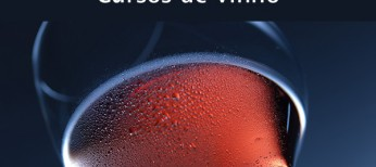 """Projeto """"APESP nas Regionais"""" promove cursos de vinho em Bauru, Santos e Campinas. Conheça a impressão dos colegas!"""